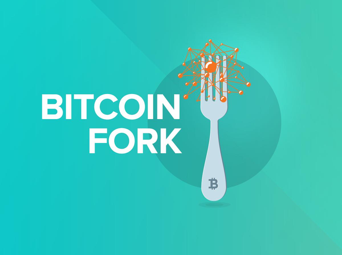 بیتکوین یا Bitcoin Cash، مسئله این است