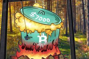 چرا و چگونه بیت کوین از ۷۰۰۰ دلار فراتر رفت ؟