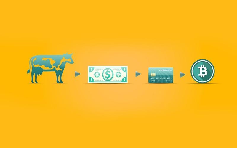 چرا ارز دیجیتال الگوی اجرایی آینده در نظام سرمایهداری است؟