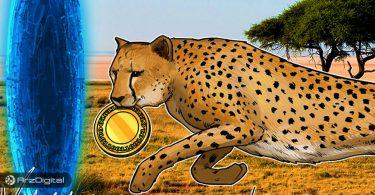 بازار ارزهای دیجیتال در آفریقا، گرم است!