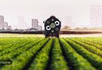آیا بلاک چین صنعت مواد غذایی را دگرگون خواهد کرد؟