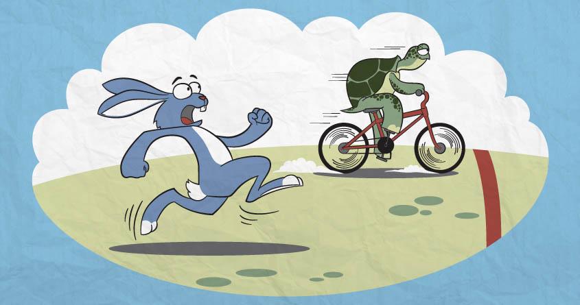 آشنایی با لاکپشتها و خرگوشها در بازارهای مالی