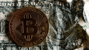 بیت کوین برای جایگزین شدن با دلار باید به قیمت بیش از 200 هزار دلار برسد !