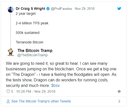 کریگ رایت: سایز بلاکهای بیت کوین SV به 1 ترابایت خواهد رسید