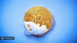 چگونه از زمستان ارزهای دیجیتال نجات پیدا کنیم – بخش اول