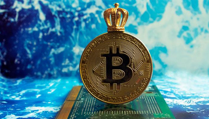 چرا بر اساس قانون قدرت تنها بیت کوین پیروز واقعی نبرد میان ارزهای دیجیتال است؟
