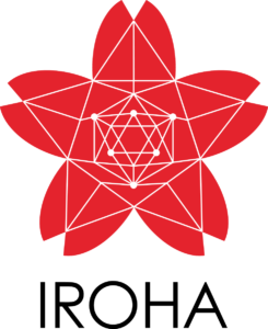 Image result for hyperledger iroha