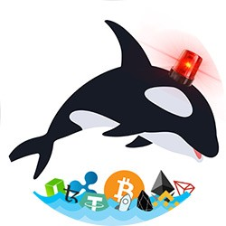 Whale Alert Twitter Account