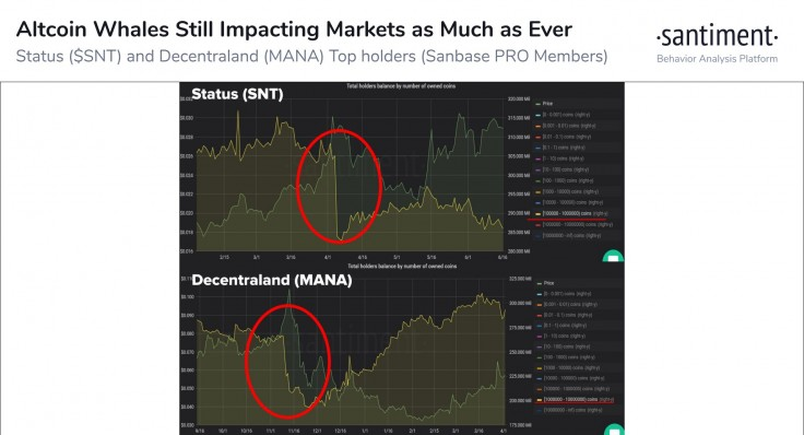 استراتژیت ارزهای دیجیتال: نهنگهای بیت کوین، نهنگهای آلت کوینها نیز هستند