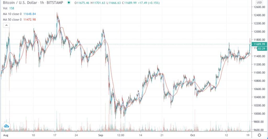 نوسانات قیمت بیت کوین