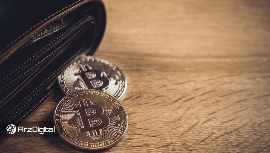 کیف پولهایی که کمتر از ۱ بیت کوین دارند فقط ۵ درصد بازار بیت کوین را تشکیل میدهند