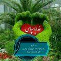 محمد زمانی