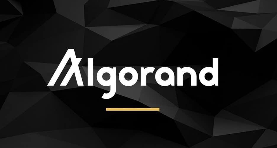 آرینگتون کپیتال ۱۰۰ میلیون دلار برای حمایت از پروژههای الگورند اختصاص میدهد